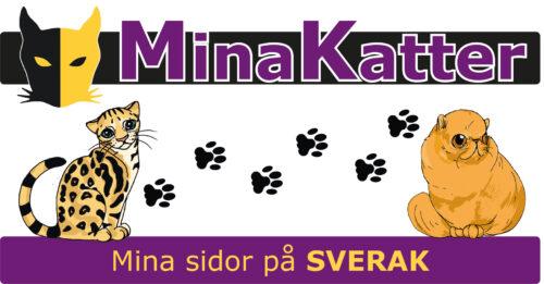 Testpersoner till Mina Katter sökes